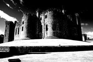 Alnwick Castle by fcpr