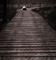the walkway by ChrissieRed