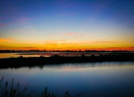 Sunrise in Camargue. Everyone is still sleeping by Mavricot