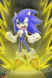 Sonic - Supercharged by BroDogz