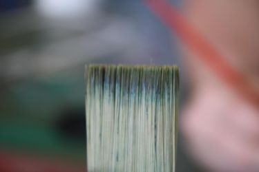 Paint Brush up close by GuardianXDemon