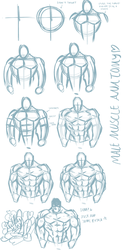 Basic Male Anatomy Tutorial (Front View) by catthing