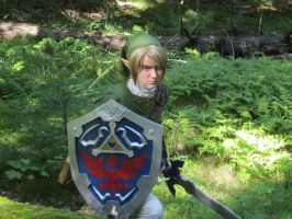 Fighting among ferns - Twilight Princess Link by Rinkujutsu