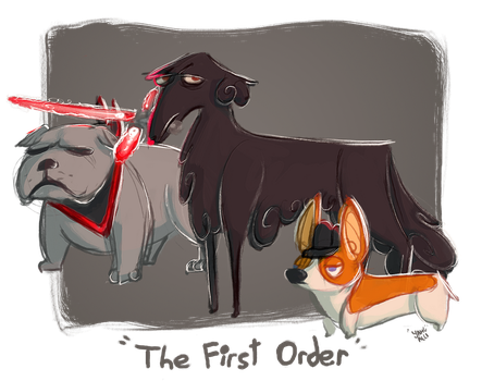 The First Order by yahualli