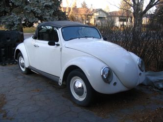 My Bug by KyleAndTheClassics