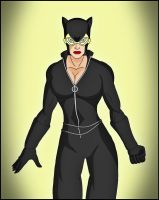 Catwoman - new 52 by DraganD