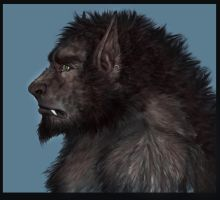 Wolfman_profile v.2 by H-M-M