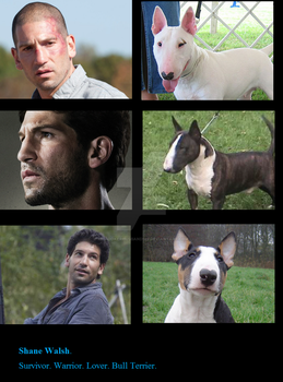 Shane Walsh by MrHookerHusband187