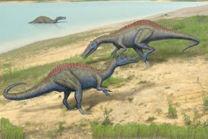 Suchomimus rutting males by paleopeter