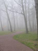 Foggy Pathway Background 1 by loopyker-stock