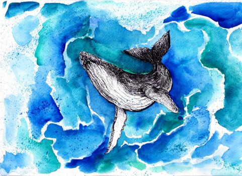 Humpback Whale by beaugan