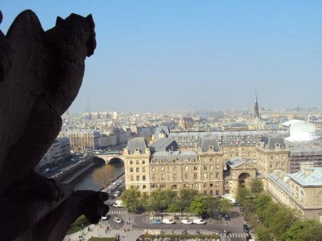 Notre Dame by WhenEveryoneWasHappy