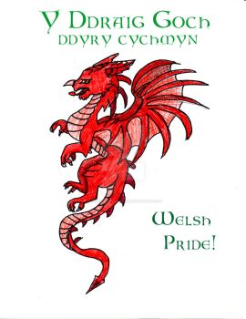 Y Ddraig Goch Inspires Action final by Thefoxinthemirror
