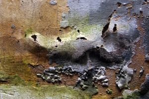 Grungy wall by BackXture
