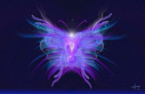 Motion Through Time Butterfly by Ashnandoah