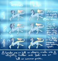 MLP SPECIE - Arciquoas [OPEN] by overtherainbw