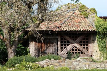 Wood Shed by organicvision