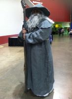 Gandalf by VeronicaPrower
