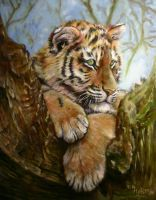 tiger cub hanging out by Waterdragoness
