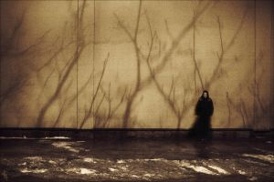 a girl and shadows by Elipa