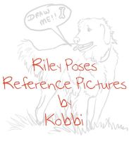 Riley Pose Reference Pictures by kobbi