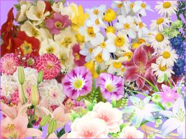 bouquets of flowers PNG by dfrtgyr6yu7