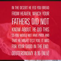 Deuteronomy 8:16 by designed4jesus
