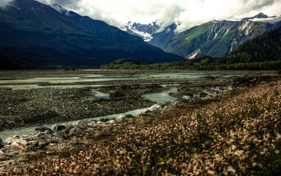 Meander by KRHPhotography