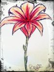 pink/red flower by RayTheEvil