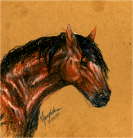 horse oil pastels sketch by SpiritOfTheFire