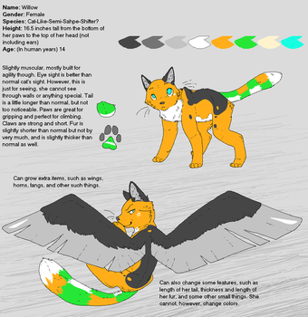 2013 New Willow Reference Sheet by FuzzyKitten0
