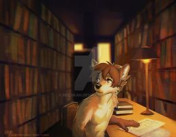 The Library by Lukiri