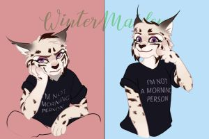 Moods by WinterMaiden11