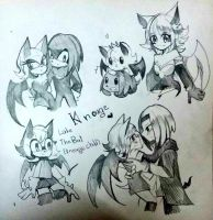 :Sonicdoodle03: Knouge by Euraysia