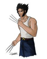 WOLVERINE for Ann :D by sub-z