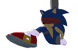 Sonic Tied and Blindfolded by nalathequeen2186