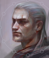 Witcher by Linekotsi