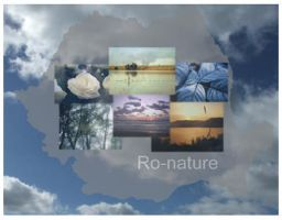 Concurs ID by - nu-tones by Ro-nature