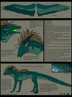 Xanna Character Sheet by Dragonsong93