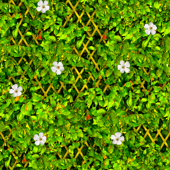 Overgrown Fence2 by CyberDreamLady