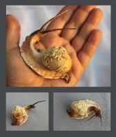 Siamese snail II - for sale by hontor