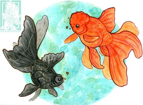 Goldfish duo by Shadowmanic