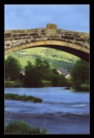 Bridge at Llanwrst by ash