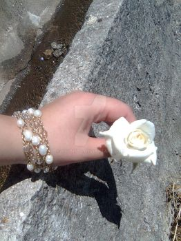 White roses are made to be perfect by aslaifos