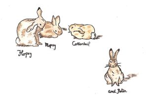Rabbits by dop12