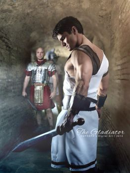 The Gladiator by SPRSPRsDigitalArt