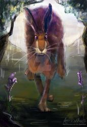 Scottish Hare by Mad--Munchkin