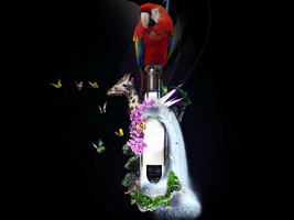 Parrot on a Bottle by glors