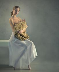 Lady with an Ermine by photoport