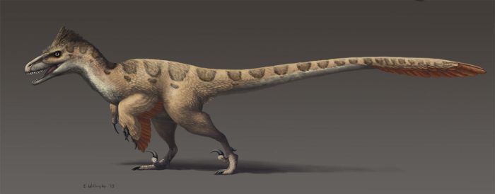The Most Accurate Inaccurate Utahraptor by EWilloughby